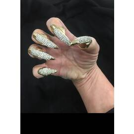 bling nail set crystal 5pc cat claws